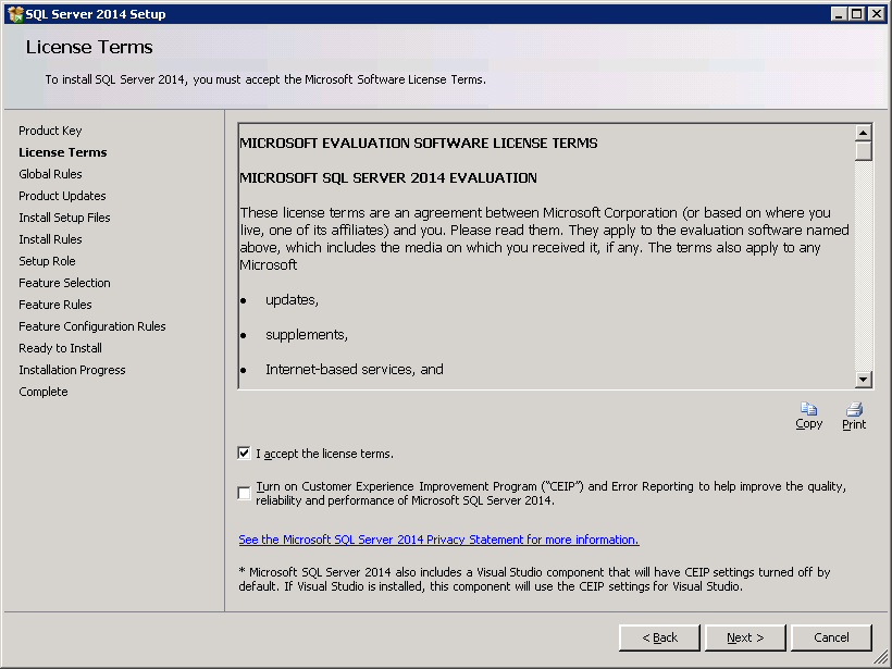 SQL server 2014 stand alone installation - License Term