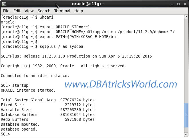 Oracle 11g Release-2 (11.2)(64-bit) on CentOS 6.x (64-bit) - Startup Database - SQL Prompt