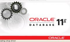 Oracle 11g Logo