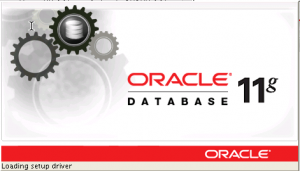 Oracle 11g Logo